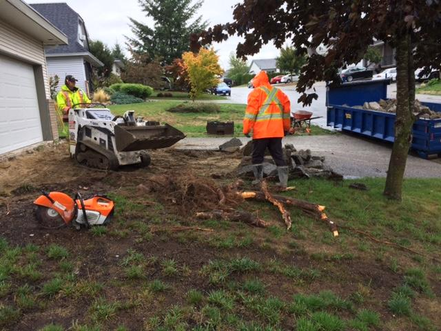 removing-old-concrete-driveway