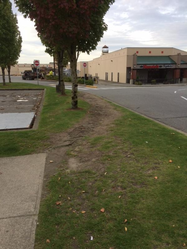 commercial-concrete-sidewalk-surrey-1